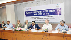DCCI seminar: Despite global demand,...