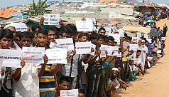 Study claims an estimated 24,000 Rohingyas...