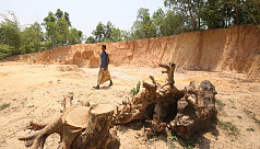 Cox's Bazar forestland may entirely...