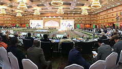 OIC stresses need for collective efforts...