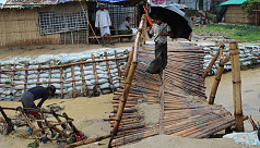 Over 31,000 Rohingyas vulnerable to...