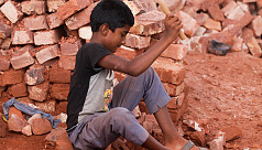 ILO: All quarters must work together to eradicate child labour