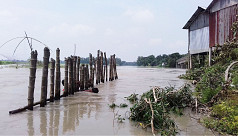 Jamalpur washed out by rising Jamuna...