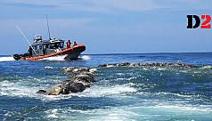 Hundreds of endangered sea turtles found dead