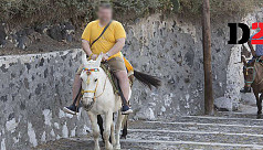 Obese tourists cripple donkeys injured...