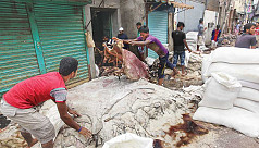 Govt to take legal action for child employment in tanneries