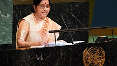 India, Pakistan at UN trade blame over...