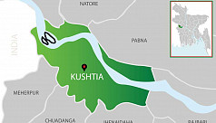 Woman hacked to death in Kushtia