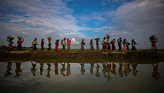 Hundreds of Rohingya families flee India...
