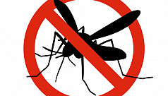 The fight against dengue