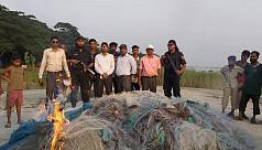 Illegal ilish catching yet to cease in Munshiganj