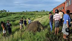 Sri Lanka train kills three elephant...