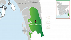 Woman killed in elephant attack in Bandarban