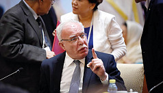 Palestinian FM: Two-state solution to...