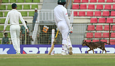 Moments, Bangladesh vs Zimbabwe