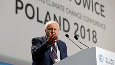 David Attenborough leads call for world...