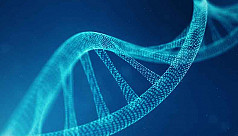 New genome sequencing sheds light on...