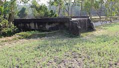 Bridge to nowhere puzzles locals in...