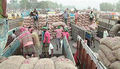 Indian onions at throwaway prices in...