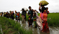 Myanmar forces Rohingya to accept cards...