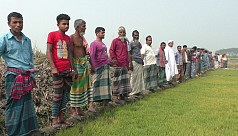 Farmers form human chain after brick...