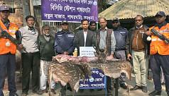 Coast Guard seizes venison in Barguna