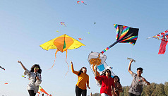 Two-day Kite Festival ends in Cox's...