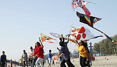 National Kite Festival held in Cox's...