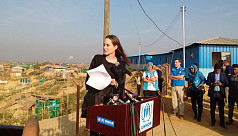 Angelina Jolie: Myanmar must show commitment...
