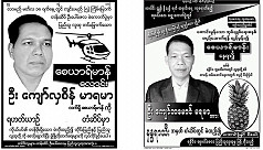 Upazila polls: Candidates with posters...