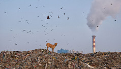 New Delhi is world's most polluted capital,...