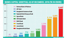 10 banks face Tk26,687cr capital shortfall