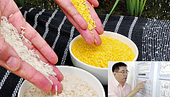 Rice science's coming of age