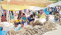 Dry fish fair held in Nasirnagar