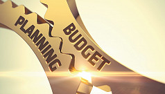 Bothering about the budget