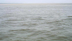 Nor'wester killed 3 in Padma