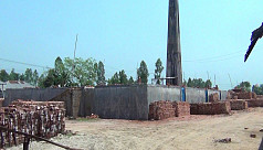 Toxic smog from Panchagarh brick kilns destroys crops, plants