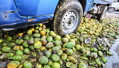 RAB destroys 400 maunds mangoes in Dhaka