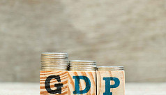 GDP to grow 1% next fiscal, 1.6% for...