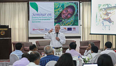'Long term investment needed in multisectoral approach for marginalized groups'