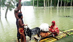 Minister: 75 killed in flood so far