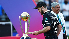 Williamson says World Cup final defeat...