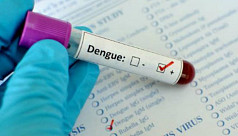 2 die of dengue in Khulna