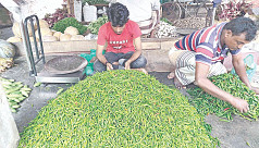 Green chili price at Hili drops by Tk40-45...