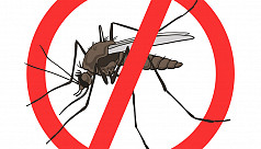 CCC launches special anti-mosquito drive...