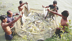 Aquaculture helped over 2m people escape...