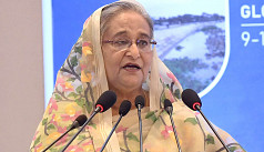 PM: Cox's Bazar ecology under threat from Rohingya settlements