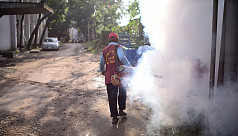 DNCC to run anti-mosquito drive at...