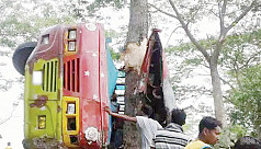 19 killed in road accidents