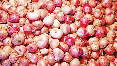Import cost behind onion price